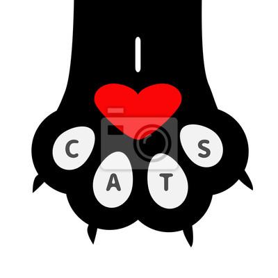 Velká černá kočička com