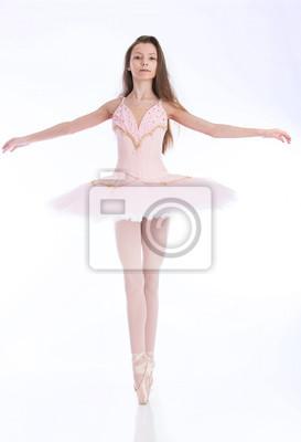 85b40d5b77c Mladí baletní tanečnice bezešvé bílém pozadí růžové tutu fototapeta ...