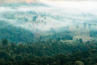 Fototapeta Mlha v údolí