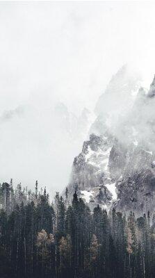 Fototapeta mlhavá krajina v tatry
