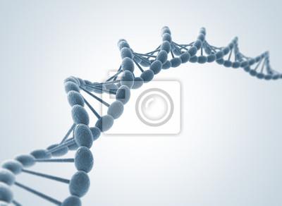 Fototapeta Model DNA