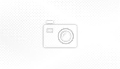 Fototapeta Moderní polotónové bílé a šedé pozadí. Návrh koncepce dekorace pro web layout, plakát, banner