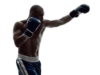 Fototapeta muž boxeři box samostatný silueta