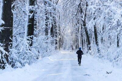 Fototapeta Muž v lese v zimním období