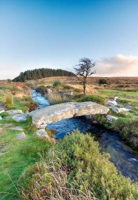 Fototapeta Národní park Dartmoor