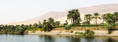 Fototapeta Nil pobřeží v přírodě