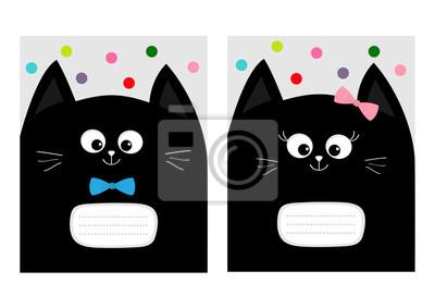 Černá kočička luk