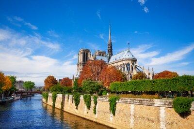 Fototapeta Notre Dame de Paris podél řeky Seiny