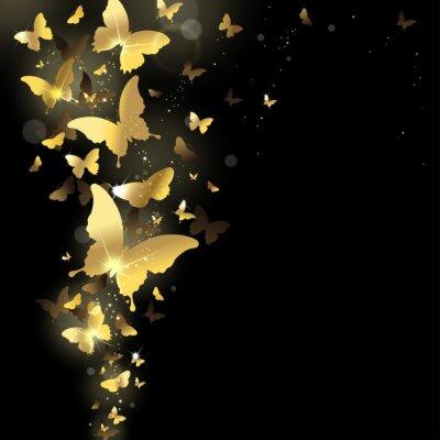 Fototapeta ohňostroj motýlů