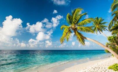 Fototapeta Osamělé pláži na Maledivách