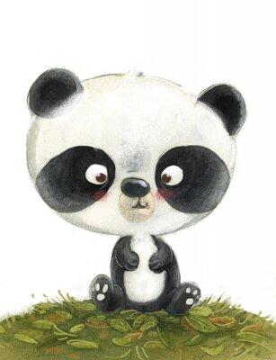 Fototapeta oso panda pequeño