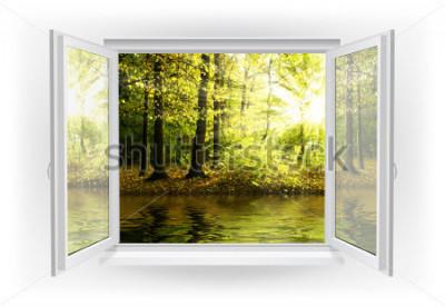 Fototapeta Otevřené okno s lesem na pozadí