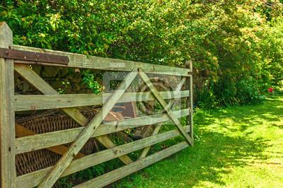 Fototapeta Otevřete bránu do Meadow pole