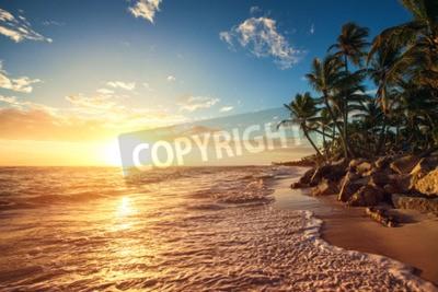 Fototapeta Palmy na tropické pláži, Sunrise výstřel