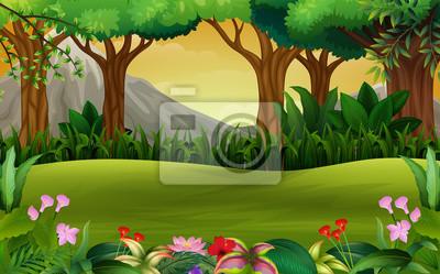 Fototapeta Panoramatické zelené lesní krajina s pozadím hory
