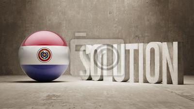 Paraguay. Solution Concept.