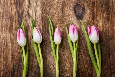 Fototapeta pět růžové tulipány na dřevěném pozadí