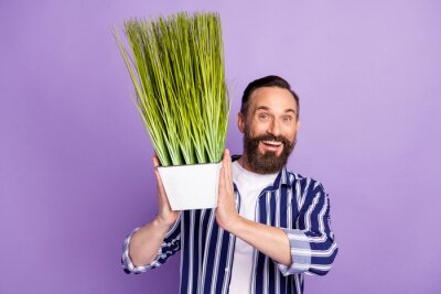 Fototapeta Photo of excited mature man hold vase home plant isolated over violet color background