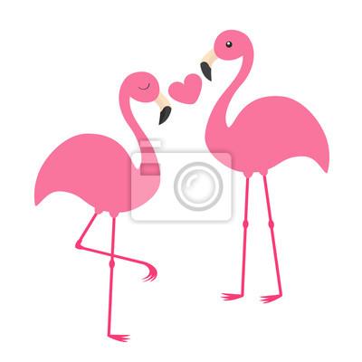 Milovat ptáky