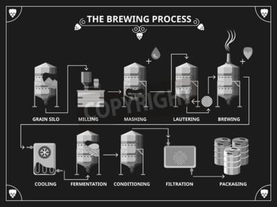 Fototapeta Pivo varní proces. Vector výroba piva infographic set. Objednat rmutování lautering produktu ilustrační