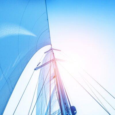 Fototapeta Plavit se na modré obloze pozadí