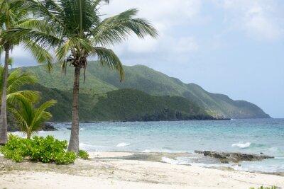 Fototapeta Pláž a hory v St. Croix