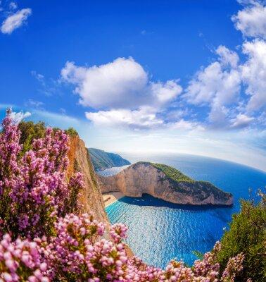 Fototapeta pláž Navagio s ztroskotání a květy proti modré obloze na ostrově Zakynthos, Řecko