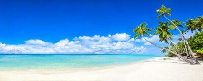 Fototapeta Plážové panorama s mořem a palmami