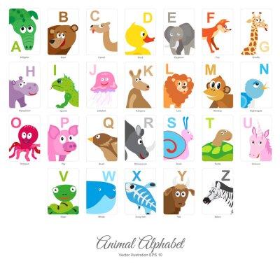 Fototapeta Ploché Alphabet Animal