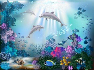 Fototapeta Podvodní svět s delfíny a rostlin