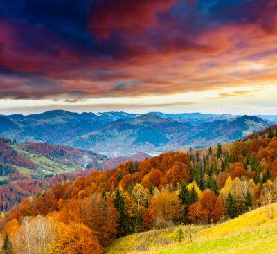 Fototapeta Podzim