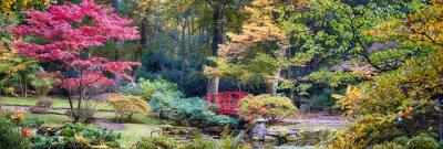 Fototapeta Podzim v japonské parku, panoramatická