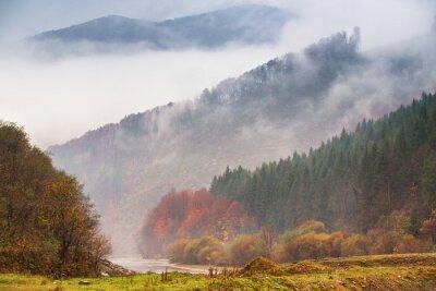 Fototapeta Podzimní déšť a mlha v horách. Barevné podzimní lesní pozadí