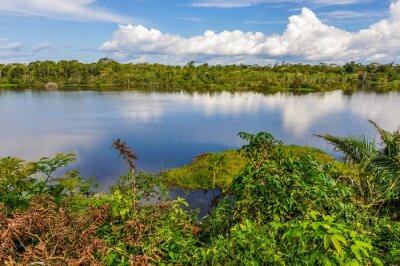 Fototapeta Pohled na jezero v amazonského deštného pralesa, Manaos, Brazílie