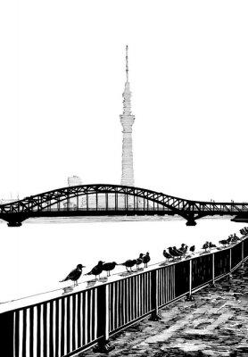 Fototapeta Pohled Sumida most