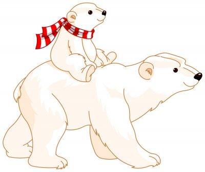 Fototapeta Polar Bear Mom and Baby
