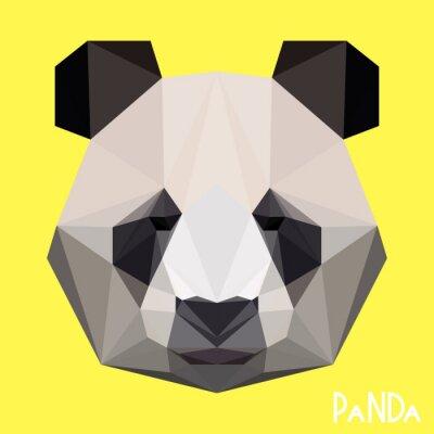 Fototapeta Polygonální geometrický panda portrét