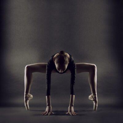 Fototapeta Portrét mladé krásné ženy gymnastka