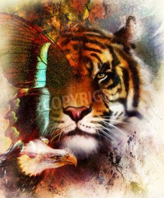 Fototapeta Portrét tygr s orlicí a motýlí křídla .. Barva abstraktní pozadí a ornamentem, vinobraní struktuře. koncept Animal