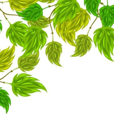 Fototapeta Pozadí stylizovaného zelenými listy na přání