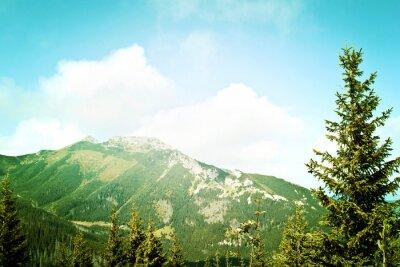 Fototapeta Příroda v horách.