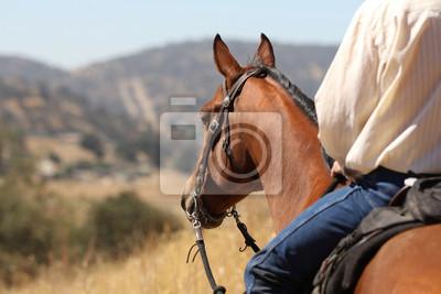 Randí s kovbojem rodeo