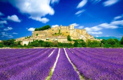 Fototapeta Provence - levandulová pole ve Francii