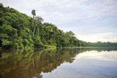 Fototapeta provincie Tambopata