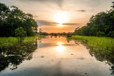 Fototapeta Řeka v amazonského deštného pralesa za soumraku, Peru, Jižní Americe