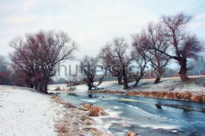 Fototapeta Řeka v zimě