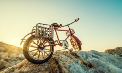 Fototapeta retro hračka kolo u moře