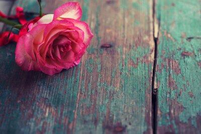 Fototapeta Romantické pozadí.