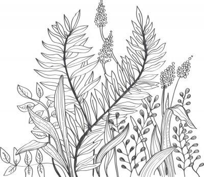 Fototapeta Romantický doodle květina pozadí