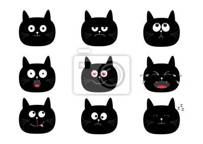super tlustá černá kočička